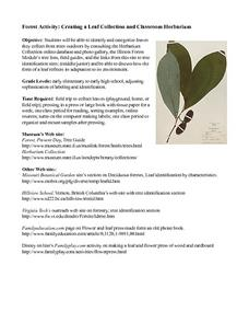 Creating a Leaf Collection and Herbarium Lesson Plan