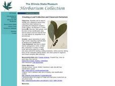 Creating a Leaf Collection and Classroom Herbarium Lesson Plan