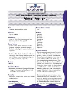 Friend, Foe, or . . . Lesson Plan