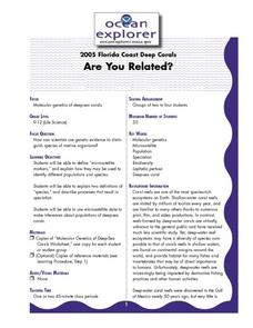 Are You Related? Lesson Plan