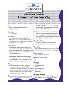 Animals of the Lost City Lesson Plan