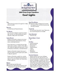 Cool Lights Lesson Plan