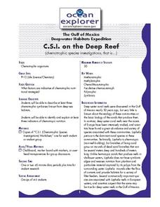 C.S.I. on the Deep Reef Lesson Plan