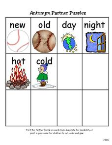 Antonym Partner Puzzles Worksheet