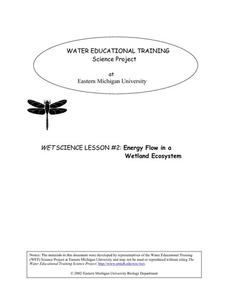 Energy Flow in a Wetland Ecosystem Lesson Plan