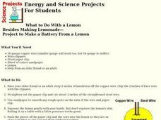 Make a Battery From a Lemon Lesson Plan