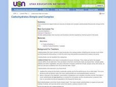 Carbohydrates - Simple and Complex Lesson Plan