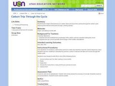 Carbon Trip Through the Cycle Lesson Plan