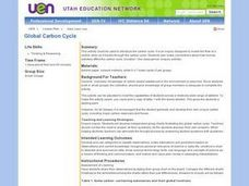 Global Carbon Cycle Lesson Plan