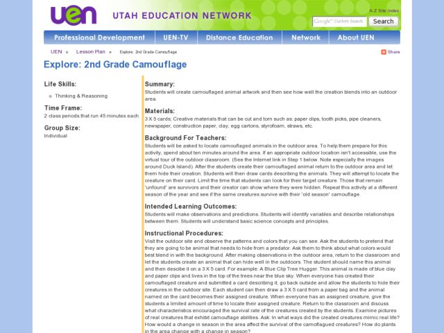 Explore: 2nd Grade Camouflage Lesson Plan