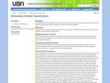 Elementary Animal Classification Lesson Plan