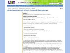 Human Sexuality (High School) - Lesson 6 / Reproductive Lesson Plan