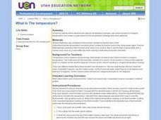 What Is The temperature? Lesson Plan