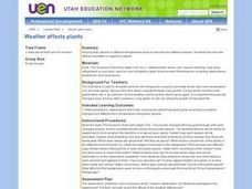 Weather Affects Plants Lesson Plan