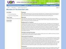 Microbes Of The Great Salt Lake Lesson Plan