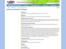Animals and Weather Changes Lesson Plan