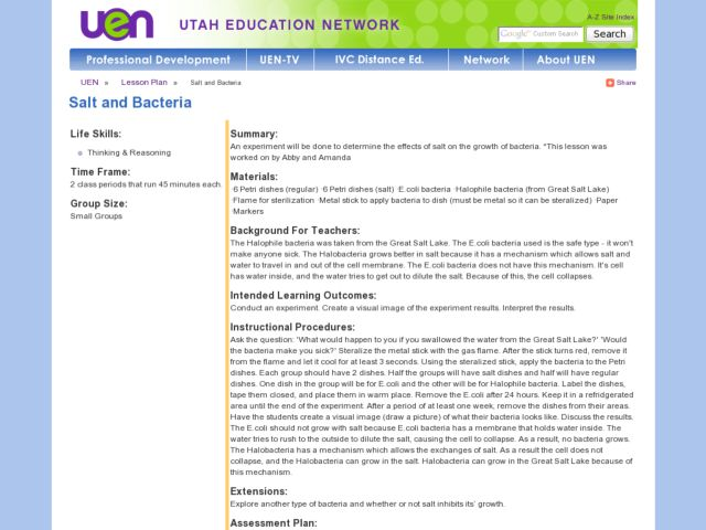 Salt and Bacteria Lesson Plan