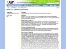 Great Salt Lake Mud Experiment Lesson Plan