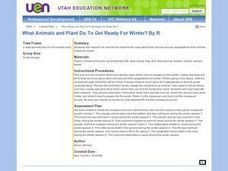 What Animals and Plant Do To Get Ready For Winter? Lesson Plan
