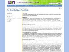 The Great Salt Lake Food Web Lesson Plan