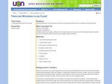 There are Microbes in my Food! Lesson Plan