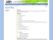 Grapevine Magic Lesson Plan