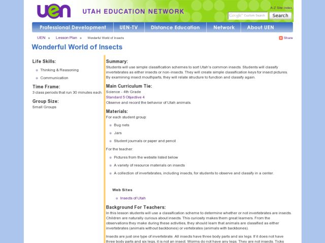 Wonderful World of Insects Lesson Plan