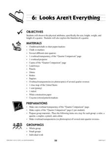 Looks Aren't Everything Lesson Plan