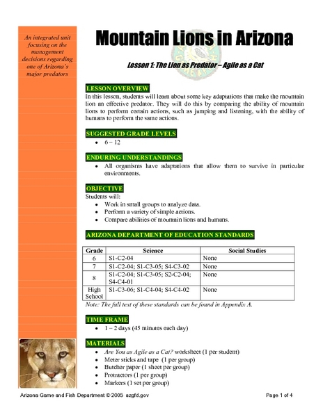 Mountain Lions in Arizona Lesson 1: The Lion as a Predator - Agile as a Cat Lesson Plan