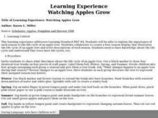 Watching Apples Grow Lesson Plan