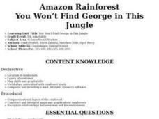 Amazon Rainforest: You Won't Find George in This Jungle Lesson Plan