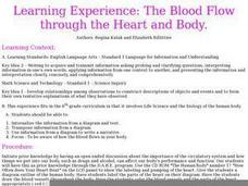 The Blood Flow through the Heart and Body Lesson Plan