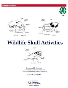 Wildlife Animal Skulls Lesson Plan