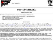 Photosynthesis: How do plants make food? Lesson Plan