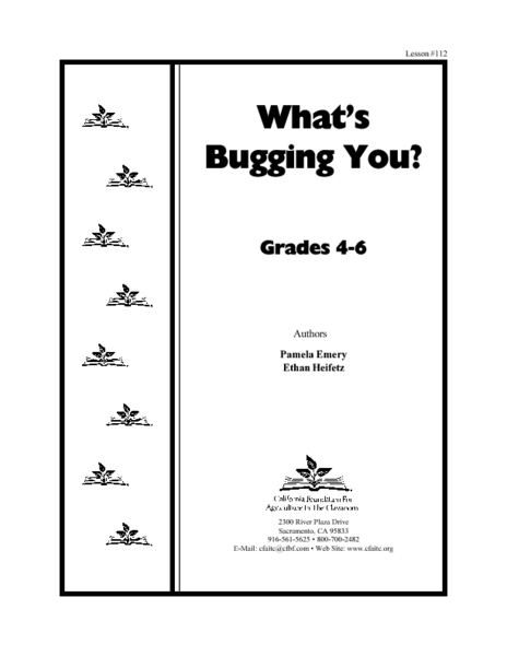 What's Bugging You? Lesson Plan