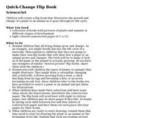 Quick-Change Flip Book Lesson Plan