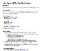 Life Cycle of the Pacific Salmon Lesson Plan