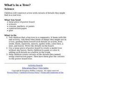 What's in a Tree? Lesson Plan