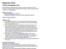 Bugs-Eye View Lesson Plan