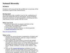 Natural Diversity Lesson Plan