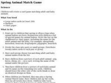 Spring Animal Match Game Lesson Plan