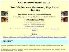 How We Perceive Movement, Depth and Illusions Lesson Plan