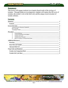 Termite Biology Lesson Plan