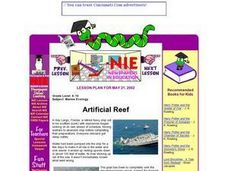 Artificial Reef Lesson Plan