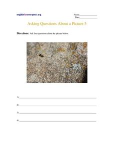 Asking Questions About a Picture 5 Worksheet