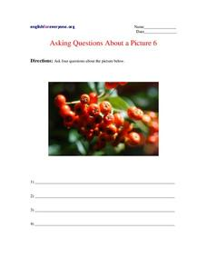 Asking Questions About a Picture 6 Worksheet