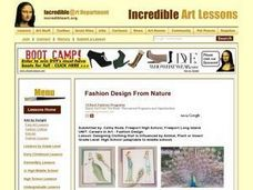 Fashion Design From Nature Lesson Plan