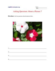 Asking Questions About a Picture 7 Worksheet