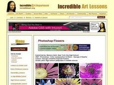 Georgia O'Keefe Inspired Flowers Lesson Plan