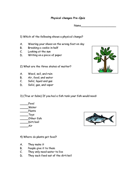 Physical Changes Pre-Quiz  Worksheet